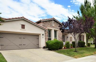 Sacramento Single Family Home For Sale: 5900 Country Manor Place