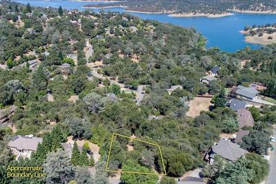 El Dorado Hills Residential Lots & Land For Sale: 683 Encina Drive