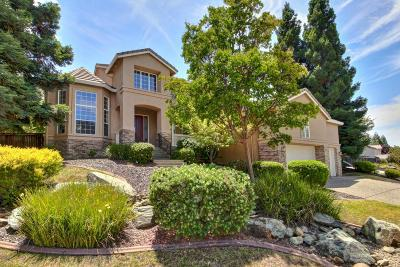El Dorado Hills Single Family Home For Sale: 1604 Halifax