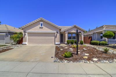 Rocklin Single Family Home For Sale: 6234 Flamingo Way