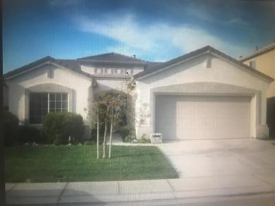Manteca Single Family Home For Sale: 1641 Blush Street