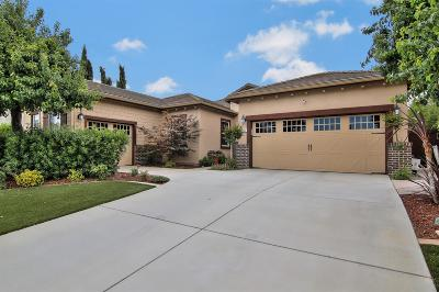 Elk Grove Single Family Home For Sale: 8232 Bonito Circle