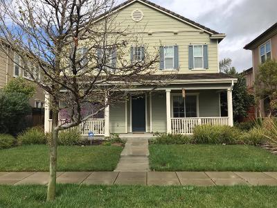 Mountain House Single Family Home For Sale: 637 Esplanade Drive