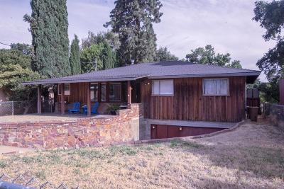 Modesto Single Family Home For Sale: 1333 River Road