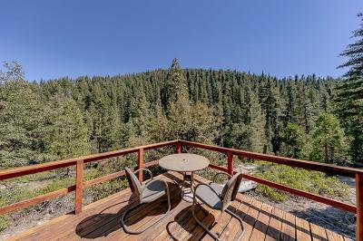 El Dorado County Single Family Home For Sale: 16 39 Mile Stone Road