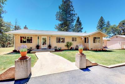 Colfax Single Family Home For Sale: 1495 Pleasant Ridge Road
