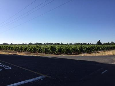 San Joaquin County Commercial Lots & Land For Sale: 21090 Tretheway Road