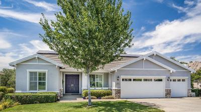 Rocklin Single Family Home For Sale: 4518 Scenic Drive