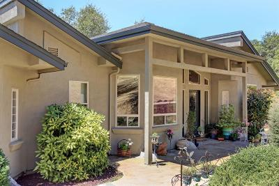 Auburn CA Single Family Home For Sale: $895,000