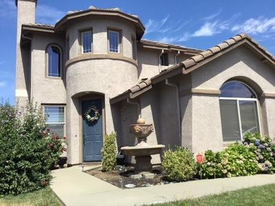 Elk Grove Single Family Home For Sale: 10168 Mosaic Way