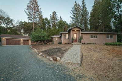 Pine Grove Single Family Home For Sale: 14870 Lupe Road