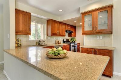 Single Family Home For Sale: 4758 Amelia Drive