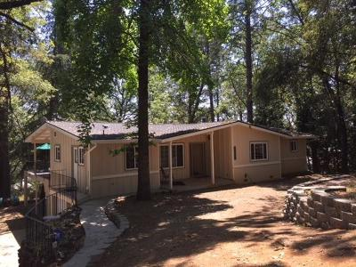 Grass Valley Single Family Home For Sale: 11595 Alta Sierra Drive