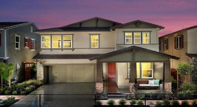 Mountain House Single Family Home For Sale: 432 East Solare Avenue