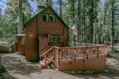 El Dorado County Single Family Home For Sale: 42 Sciots Tract