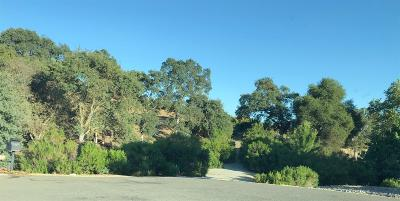Valley Springs Residential Lots & Land For Sale: Stagecoach Ct.