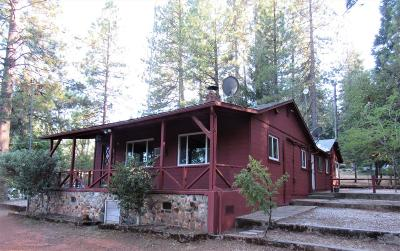 Placer County Single Family Home For Sale: 282 Sunnyside Drive