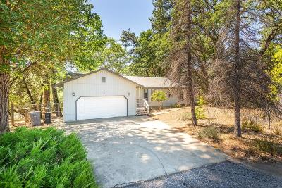 Placer County Single Family Home For Sale: 6032 Green Ridge Drive