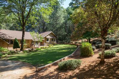 Grass Valley Single Family Home For Sale: 15159 Lakewood Lane