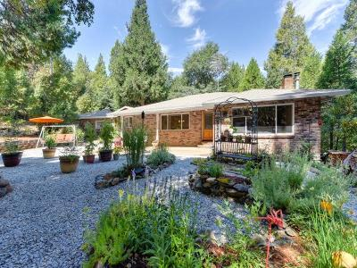 Pioneer Single Family Home For Sale: 24523 Defender Grade Road