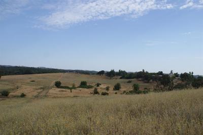 El Dorado County Residential Lots & Land For Sale: 1 Greenwood Lane