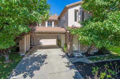 Natomas Park Single Family Home For Sale: 2417 Burberry Way