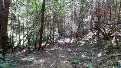 El Dorado County Residential Lots & Land For Sale: 20 Ac- Clear Creek Rd