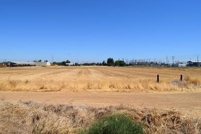 Sacramento Residential Lots & Land For Sale: Tokay Lane