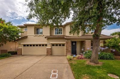 El Dorado Hills Single Family Home For Sale: 1576 Daunting Drive