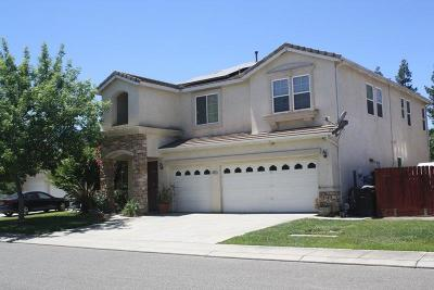 Modesto Single Family Home For Sale: 4209 Penninsula Drive