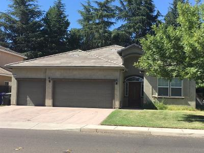 Turlock Single Family Home For Sale: 1161 Hedstrom Road