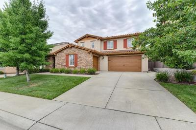 Rocklin Single Family Home For Sale: 2191 Red Setter Road