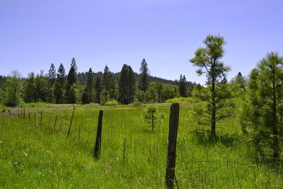 Yuba County Residential Lots & Land For Sale: 16710 Willow Glen
