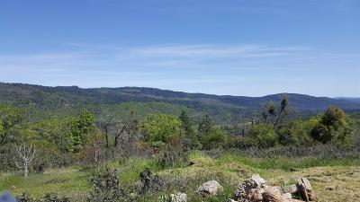 Yuba County Residential Lots & Land For Sale: 10137 Clark Ranch Way