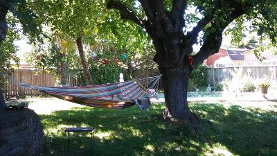 Sacramento Single Family Home For Sale: 5117 Saddlewood Street