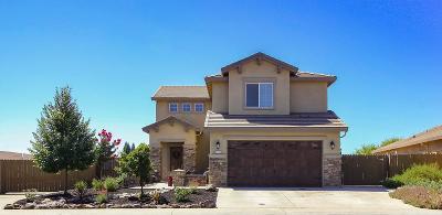 Roseville Single Family Home For Sale: 3726 Copperleaf Street