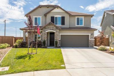 Elk Grove Single Family Home For Sale: 7521 Chappelle Way