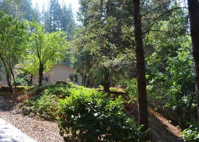 Colfax Single Family Home For Sale: 26160 Norton Grade Road