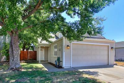 Rocklin Single Family Home For Sale: 3013 Springview Meadows Drive