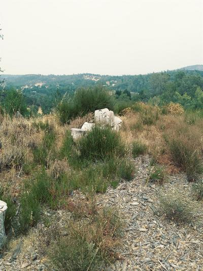 Placerville Residential Lots & Land For Sale: West Lakeview