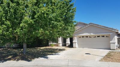 Elk Grove Single Family Home For Sale: 7023 McGill Court