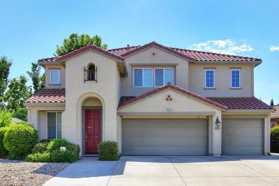 Elk Grove Single Family Home For Sale: 9278 Lamprey Drive