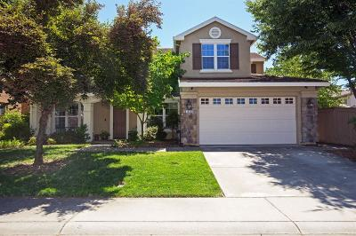 Folsom Single Family Home For Sale: 1623 Chalcedony Court