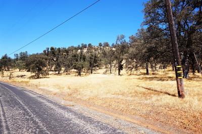 La Grange Residential Lots & Land For Sale: Castillo Way