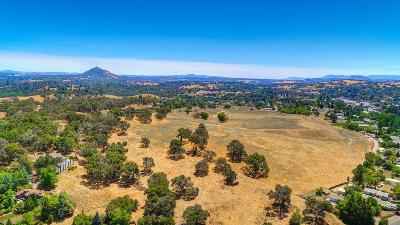 Amador County Residential Lots & Land For Sale: Jackson Gate Road