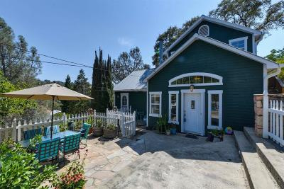 Amador City Single Family Home For Sale: 14581 Church Street