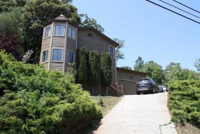 Penn Valley Single Family Home For Sale: 14368 Lake Wildwood Drive