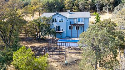 placerville Single Family Home For Sale: 4281 Kruk Trail