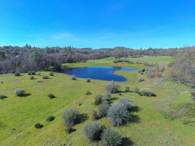 El Dorado County Residential Lots & Land For Sale: Ridge Drive