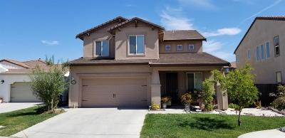 Manteca Single Family Home For Sale: 1259 Santona Court
